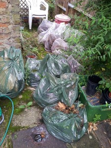Garden Waste Removal London